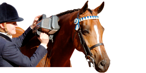 Whether you ride a show horse, a jumping horse or if you train racehorses, the Equine Pro is the only massager capable of improving your horse's overall performance.